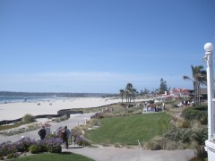 california,viaggio in california,santa barbara,can diego,coronado peninsula,spiaggie con palme